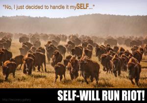 Self Will Run Riot